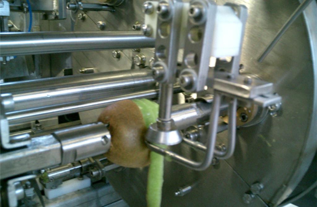 Automatic Kiwi And Mango Peeler Op30k Lifa